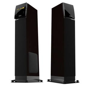 Boxe SS027A-KING Tower 2x 50W Negru