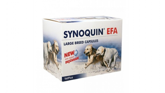 Synoquin EFA Large Breed, 30 Tablete